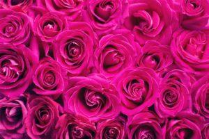 結婚記念日に花束を買って思ったこと